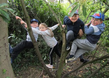 Hardingstone pupils explore the great outdoors with new Forest School